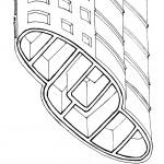 Diagrama04. Los cerramientos exteriores de los niveles inferiores están reforzados con vigas de alféizar que forman gruesos anillos horizontales para reforzar la estructura. Las ventanas se esconden tras un revestimiento continuo de vidrio.