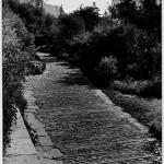 Fotografía del camino de subida a la Acrópolis, 1954-1958. Dimitris Pikionis. ANA-67-55-81. (Fuente: Archivo Dimitris Pikionis, Benaki Museum Athens)